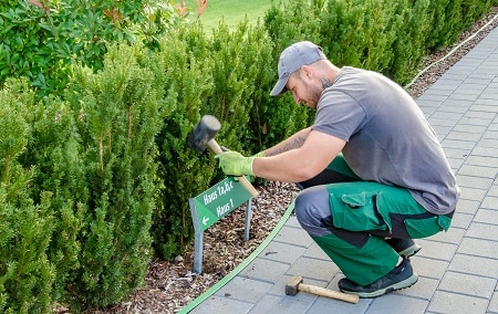 Angebot Garten SYGMA AG Liegenschaftenbetreuung